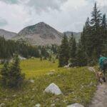8 Consigli: fare trekking con il Cane